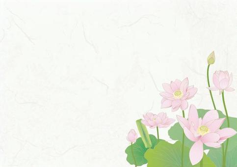 Japanese paper background _ lotus