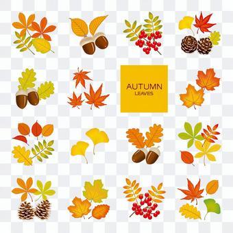0841_autumn