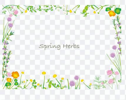 春季flower_herb框架2