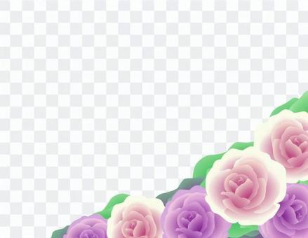 Leaf peony _ white background