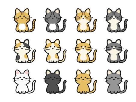 Cat color variations