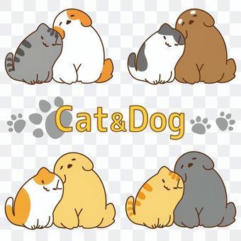 一套朋友和一隻狗和一隻貓