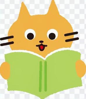 讀一本書的貓