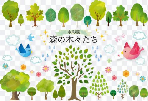 森の木々たち