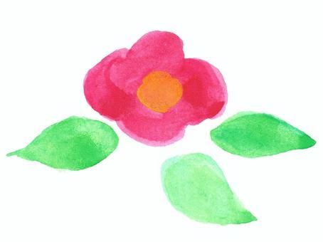水彩山茶花花朵和葉子