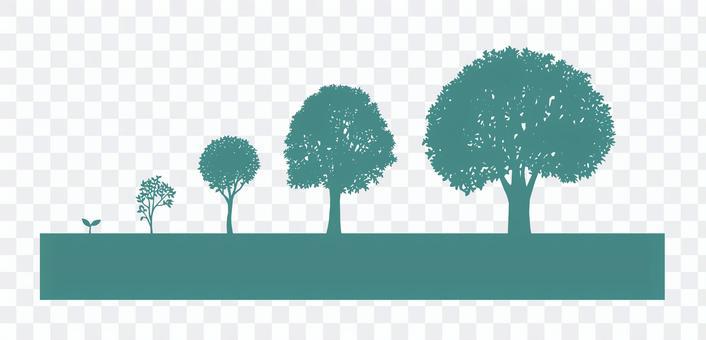 樹剪影成長