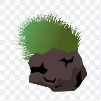 石和苔蘚1
