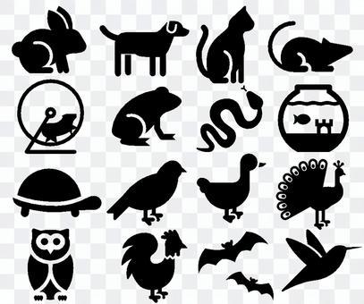 Small animals, mammals, reptiles