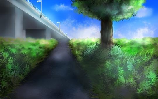 綠色空間和藍天