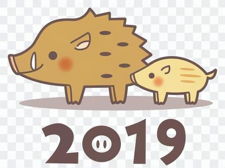 Wild boar parent and child (2019)