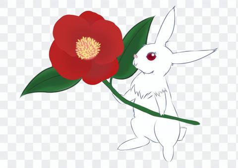 Tsubasi和兔子