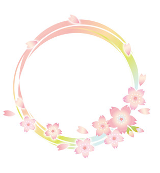 Flowers of cherry blossoms and petals