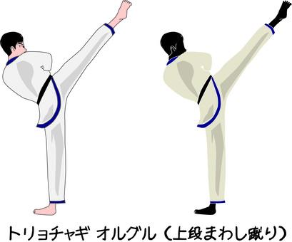 跆拳道武術打擊上轉踢