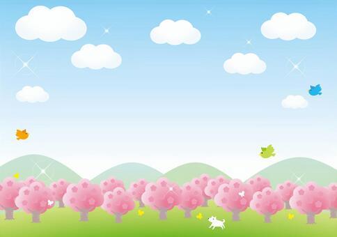 櫻花的奧卡