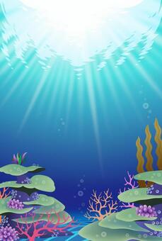 輝く青い珊瑚礁