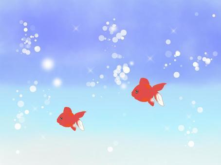 Goldfish world