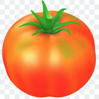 番茄_桃太郎_斜