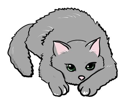 貓悠閒放鬆俄羅斯藍