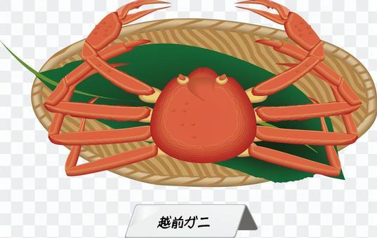 雪蟹越前蟹蟹的食材