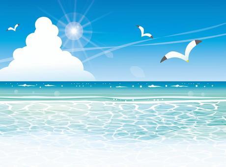 Summer sea beach and seagull