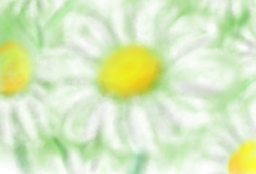 Touching the tenderness of chamomile