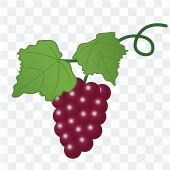 水果(葡萄)