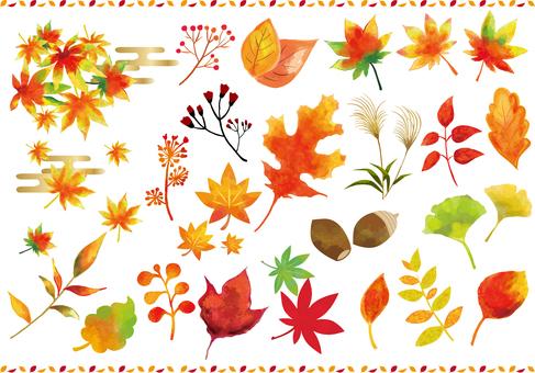 各種秋葉圖標的集合