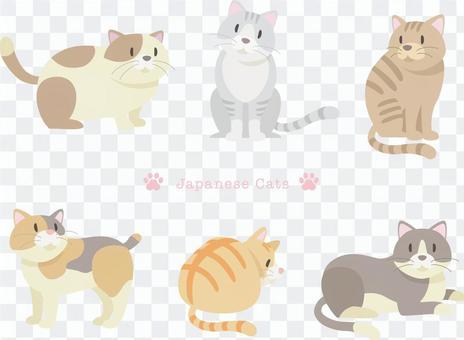 日本貓_4 _