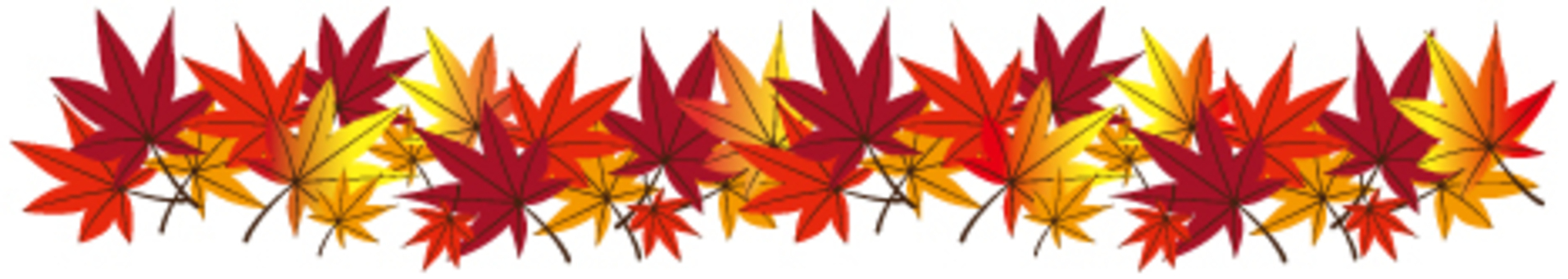 낙엽 10