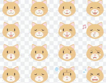 貓臉_各種面部表情