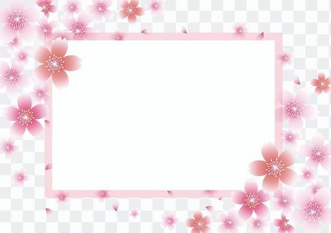 Sakura _ Frame