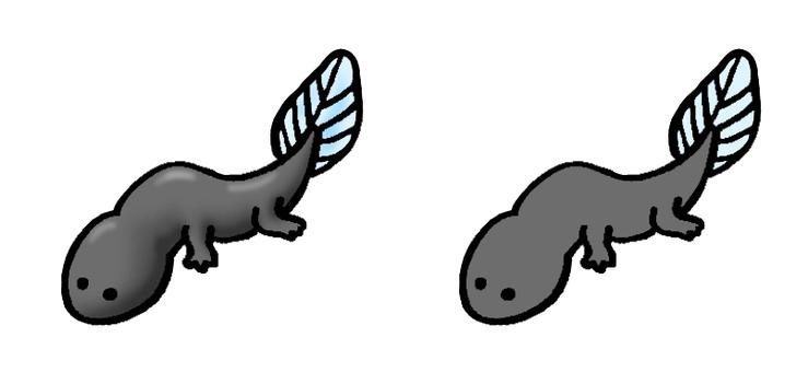Tadpoles with limbs