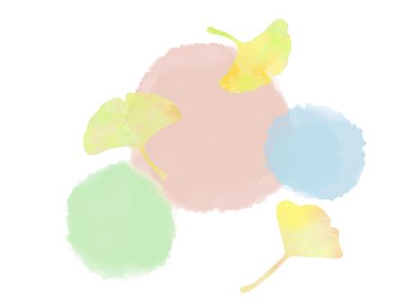 Ginkgo 6
