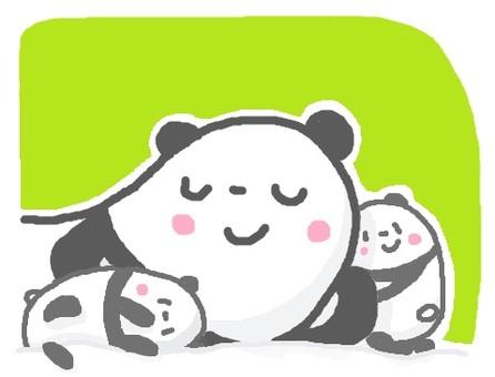 "Panda ""sleeping"" twins"