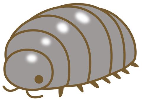 Illustration of a cute pill bug