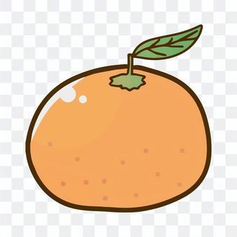 橘子的插圖
