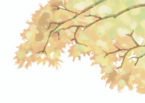 紅葉(白背景)