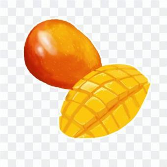 厚塗り風イラストのマンゴー
