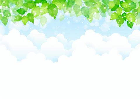 新鮮的綠色285