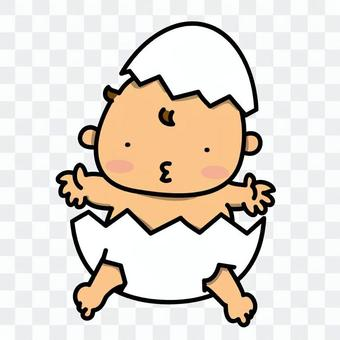 嬰兒在蛋中