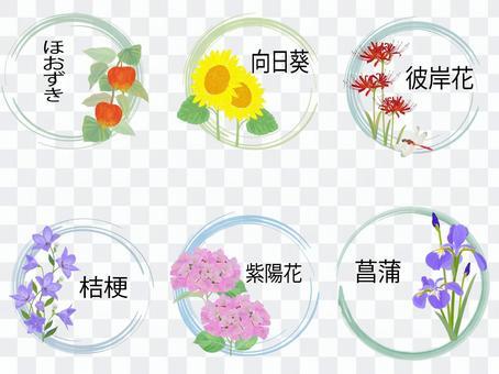 夏季花卉標題集