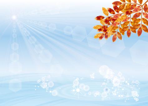 가을 경치에 물든 잎 1