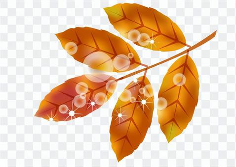 가을 경치에 물든 잎 10