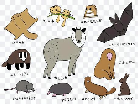 日本特有動物