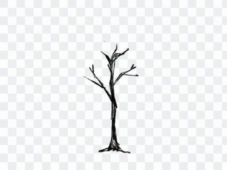 Dead tree (large)
