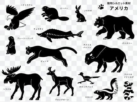 Animal silhouette (American animal) with border