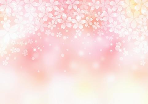 櫻花_粉紅色的背景
