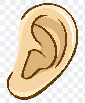 Body parts (ears)