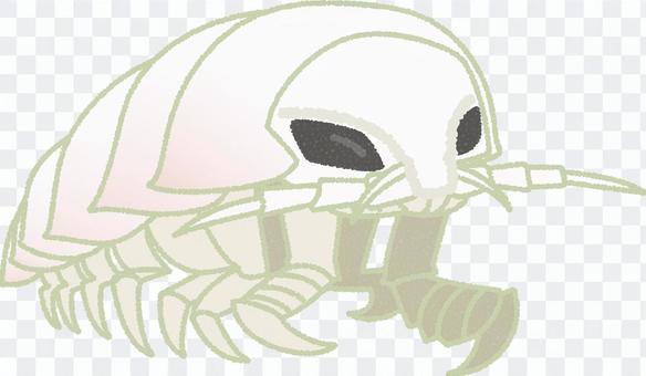 巨型甲蟲甲蟲