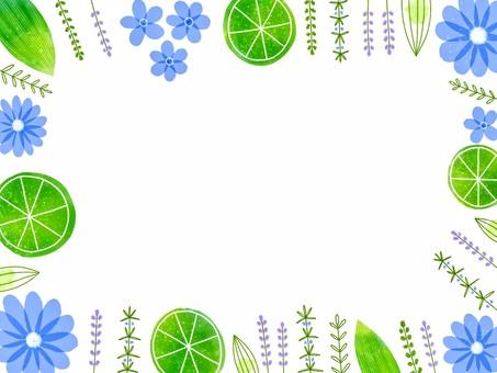 酸橙和草藥